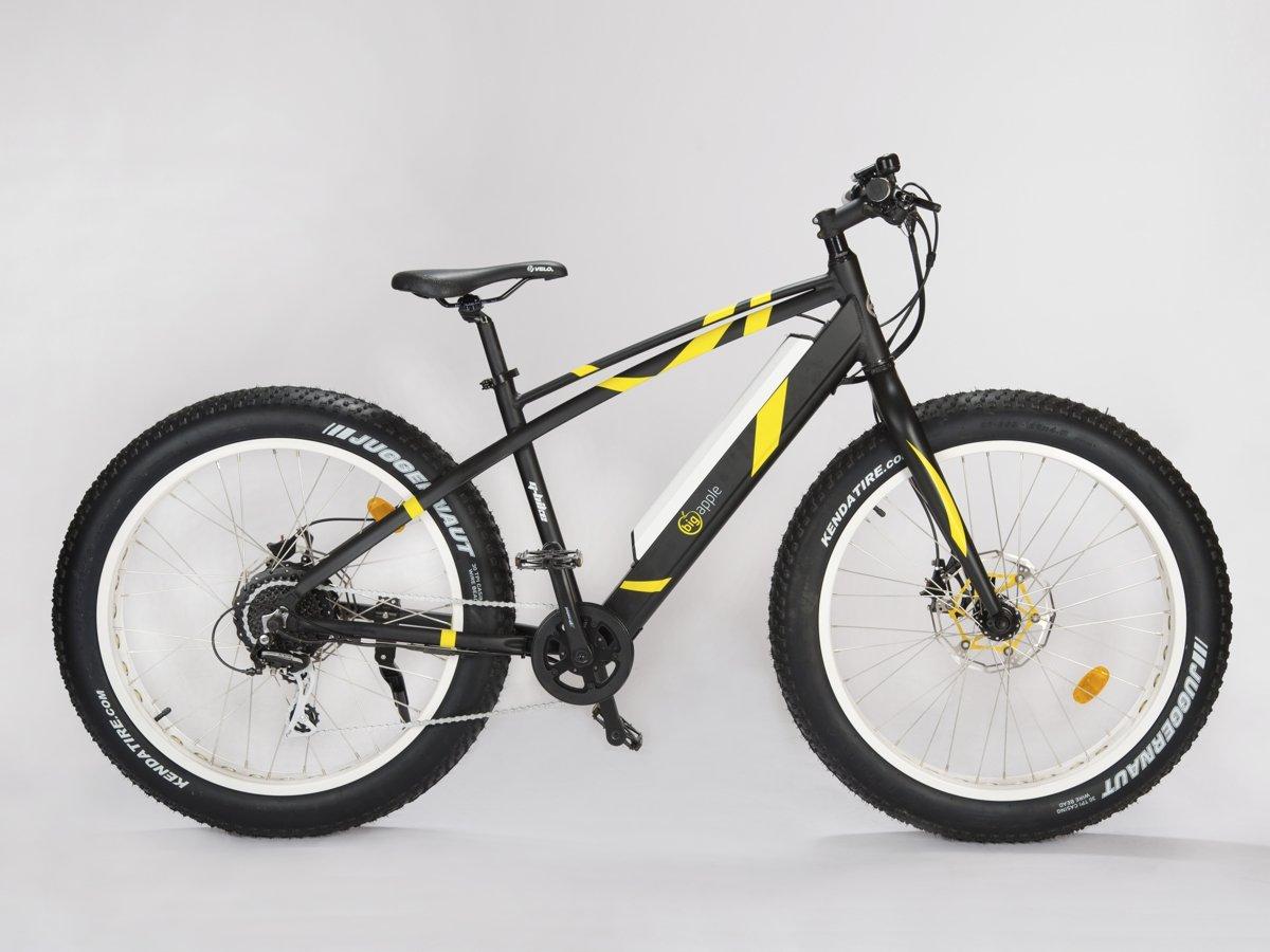 Fat Bike Electrique Speed Bike 45km/hr Geobike Noir